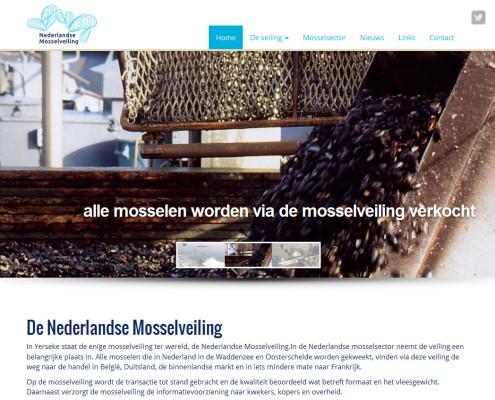Joomla! website met opvallende slideshow